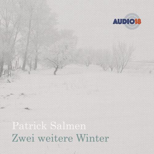 Cover vom Album Zwei weitere Winter von Patrick Salmen
